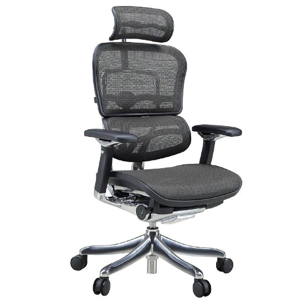 エルゴヒューマン プロ ハイタイプ W665×D665×H1110-1250mm エルゴノミクスチェア メッシュ:ブラック オフィス家具