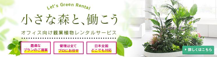 bn_green_rental