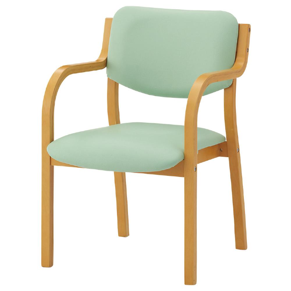 IRIS リーズチェア W520×D567×H767mm グリーン 介護チェア 福祉用椅子 介護椅子 ダイニングチェア オフィス家具