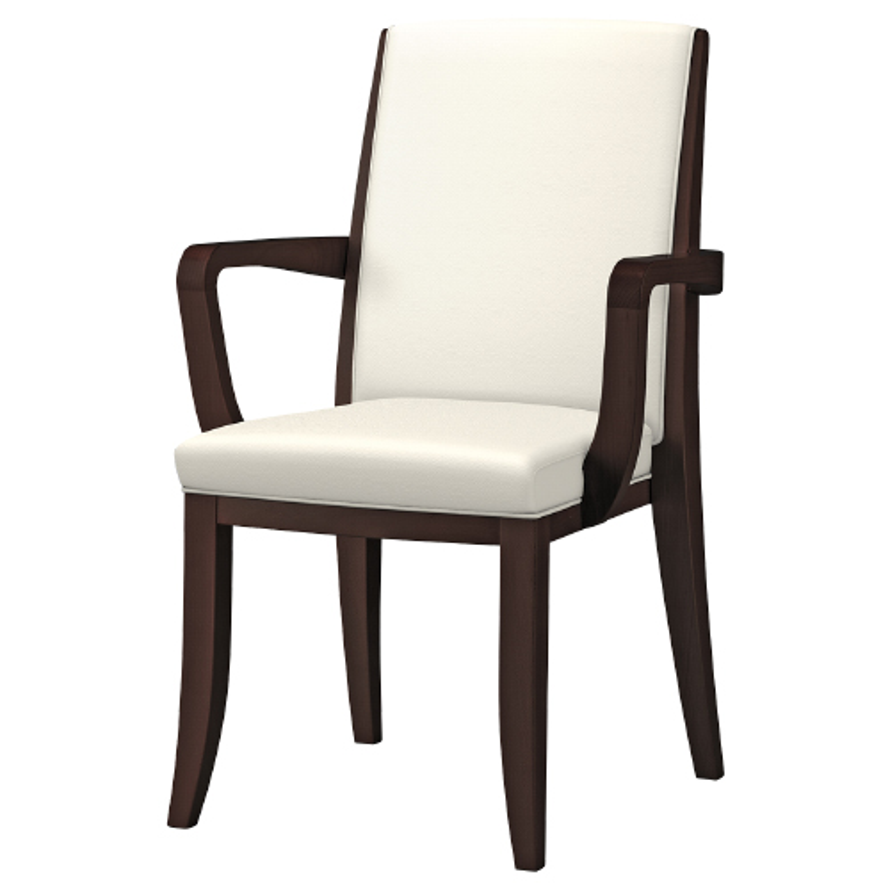 IRIS レリスタ W555×D568×H890mm ダーク 介護チェア 福祉用椅子 介護椅子 ダイニングチェア オフィス家具